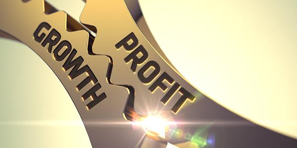Hoe winstgevend ben jij met je organisatie?